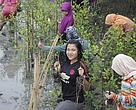 Menanam mangrove di Pantai Romantis atau Pantai Tengah bersama mahasiswa UNIMED dan SMA Kota Medan