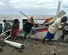 Bergotong royong menarik perahu nelayan yang baru tiba dari melaut