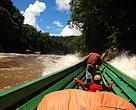 Heart of Borneo, Fahmi, Kutai Barat, Sungai Mahakam, WWF Indonesia, HoB