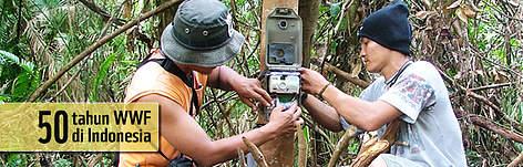/ ©: WWF-Indonesia / Sunarto