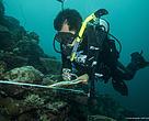 Penelitian kesehatan terumbu karang di perairan Sulawesi Tenggara