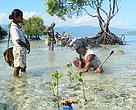 Penanaman Mangrove, Masyarakat menjadi Kunci dalam menjaga kelestarian alam