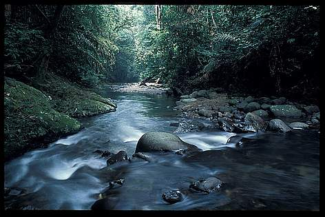 Kayan Mentarang National Park | WWF Indonesia