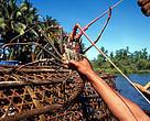 Ilustrasi penangkapan lobster menggunakan perangkap bambu