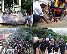 Supporter & community engagement in various WWF-Indonesia's activities @2014